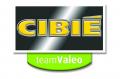 CIBIE-2008-logoa.png